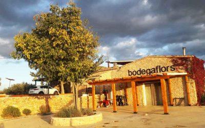 Bodega Flors: con los preparativos del embotellado