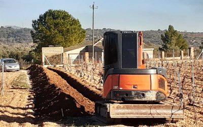 Instalación de riego por goteo en Bodega La Canetana
