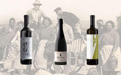 El vino Carló o Carlón, y su vinculación histórica con Sant Mateu
